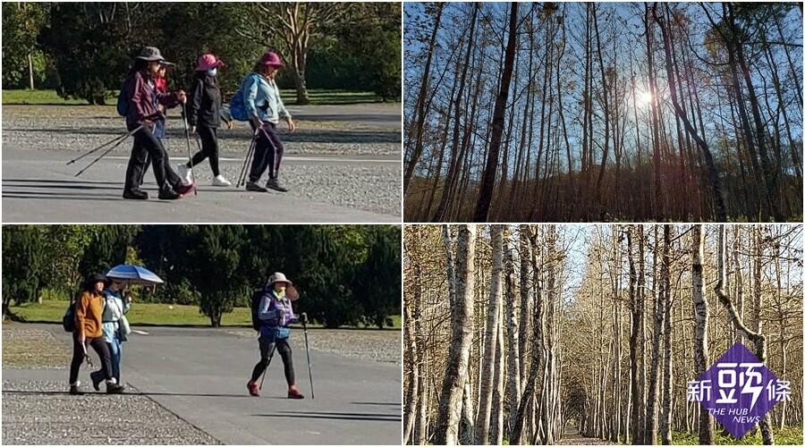 後山小調~大農大富冬天的森林
