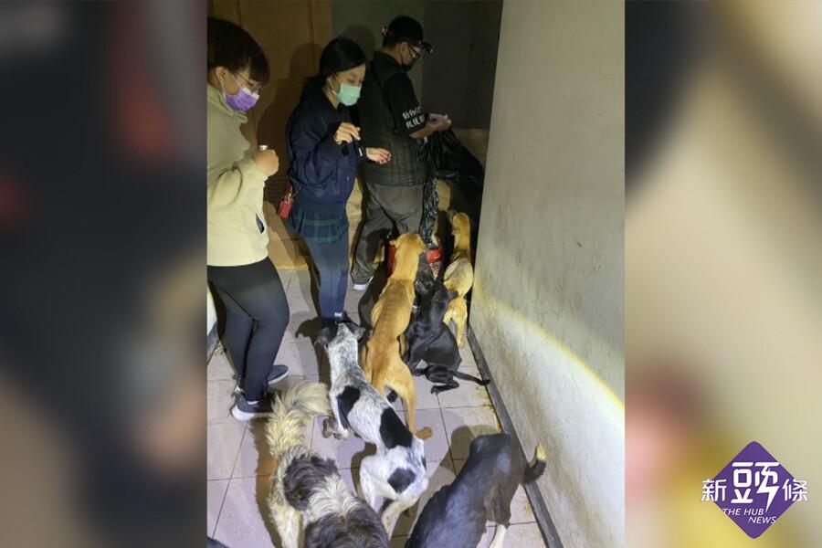 廢棄房舍疑似狗咬狗 嫌疑人移送地檢署偵辦