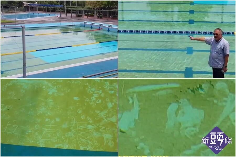 影音∕羅東運動公園游泳池未清理 池底青苔淪為作畫天堂?